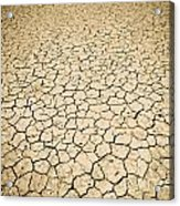 Cracked Ground Acrylic Print