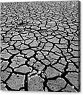 Cracks For Miles Black And White Acrylic Print