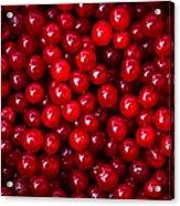 Cranberries - 1 Acrylic Print