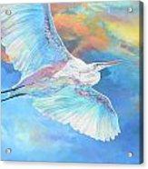 Crane Acrylic Print