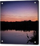 Crane Under Wires At Sunset Acrylic Print