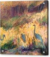 Cranes In The Grain Acrylic Print