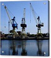 Cranes On The River Bank Acrylic Print