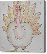 Cranky Turkey Acrylic Print