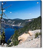 Crater Lake And Moss Covered Tree Acrylic Print