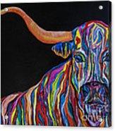 Crazy Woman Bull Acrylic Print