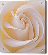 Creamy Swirl Acrylic Print