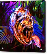Creatures Of The Deep - Fear No Fish 5d24799 Square Acrylic Print