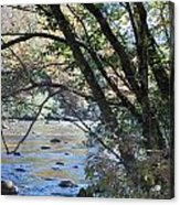 Creek 2 Acrylic Print