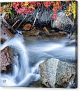 Creek At North Lake Ca_1 Acrylic Print