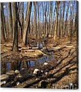 Creek At Woodland Park Acrylic Print