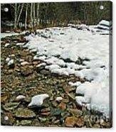 Creek Bed Acrylic Print