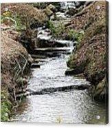 Creek In Alabama Acrylic Print