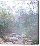 Creek In The Forest Acrylic Print