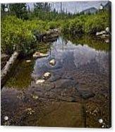 Creek In Vermont Acrylic Print