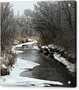 Creek Mood Acrylic Print