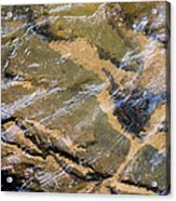 Creek Reflections Acrylic Print