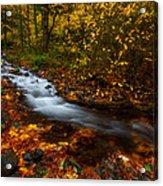 Creekside Colors Acrylic Print