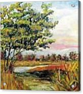 Crepe Myrtle In The Wetlands Acrylic Print