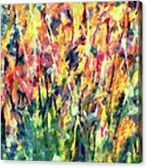 Crescendo Of Spring Abstract Acrylic Print