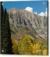 Crested Butte Colorado Acrylic Print