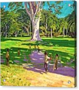 Cricket Match St George Granada Acrylic Print by Andrew Macara