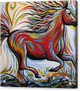 Crimson Lightning Acrylic Print