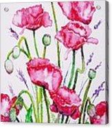 Crimson Poppies Acrylic Print