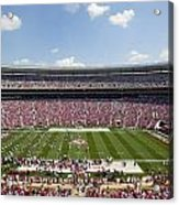 Crimson Tide A-day Football Game At University Of Alabama  Acrylic Print by Carol M Highsmith