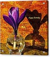 Crocus Floral Birthday Card Acrylic Print