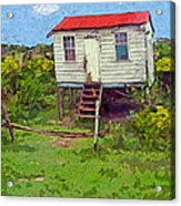 Crooked Little House - Orange Cats Acrylic Print