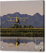 Crop Duster Applying Seed To Rice Field Acrylic Print