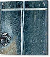 Cross2bear Acrylic Print by Tom Druin