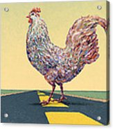 Crossing Chicken Acrylic Print
