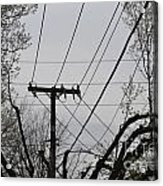 Crossing Power Lines Acrylic Print