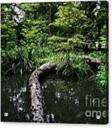 Crossing The Pond Acrylic Print