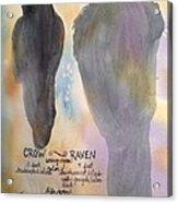 Crow And Raven Acrylic Print