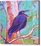 Crow In The Tree 3 Acrylic Print
