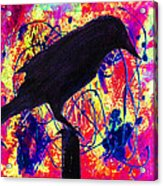 Crow On Red Acrylic Print