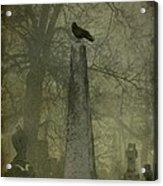 Crow On Spire Acrylic Print