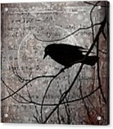Crow Thoughts Collage Acrylic Print