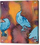 Crow Series 1 Acrylic Print by Helen Klebesadel