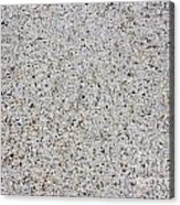 Crushed Shell Sidewalk Acrylic Print