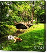 Cruz At Deer Creek Bridge Dwight Il Acrylic Print