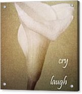 Cry Laugh Remember Acrylic Print
