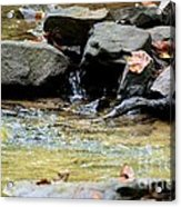 Crystal Clear Waters Of Hurricane Branch Acrylic Print
