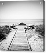Crystal Cove Overlook Black And White Picture Acrylic Print