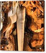 Crystal King Acrylic Print