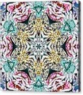 Crystal Mystery Acrylic Print