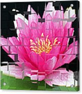 Cubed Lily Acrylic Print